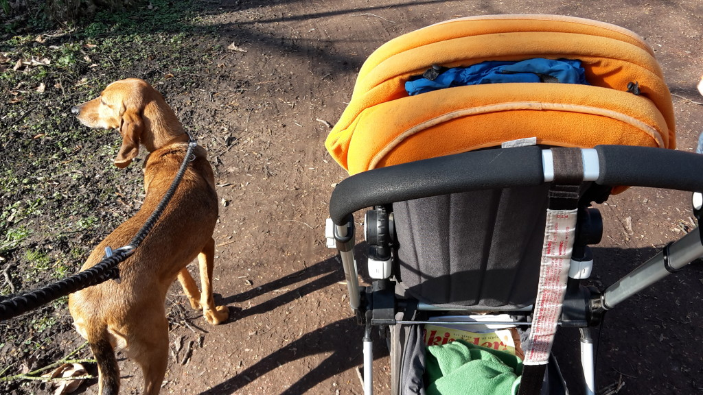 unterwegs mit Kindern und Hund